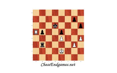 Pogonina-Cramling, practical rook endgame