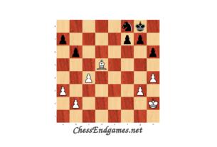 Svidler-Carlsen, Minor Piece Endgame
