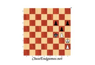 Rezan Brkic pawn endgame
