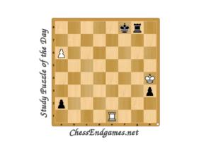 Study Puzzle of The Day E. Kolesnikov 1991
